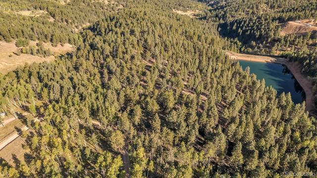 LOT 16 Woodland Road, Woodland Park, CO 80863 (#3539709) :: Finch & Gable Real Estate Co.