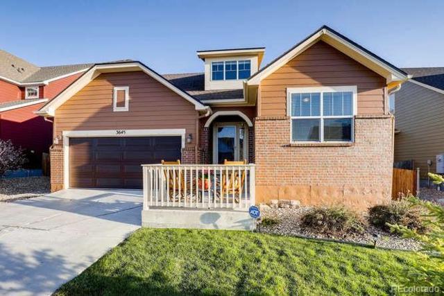 3645 Desert Ridge Place, Castle Rock, CO 80108 (#3539780) :: The Pete Cook Home Group