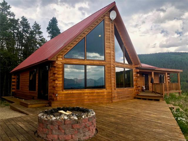 561 Empire Valley Drive, Leadville, CO 80461 (#3540557) :: The DeGrood Team