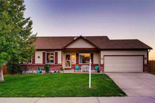 3544 E 97th Place, Thornton, CO 80229 (#3544113) :: The Peak Properties Group