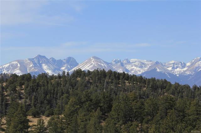 000 Vista De Agua Road, Westcliffe, CO 81252 (#3544976) :: Structure CO Group
