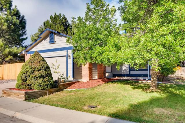 11744 Elizabeth Court, Thornton, CO 80233 (#3553417) :: The Heyl Group at Keller Williams