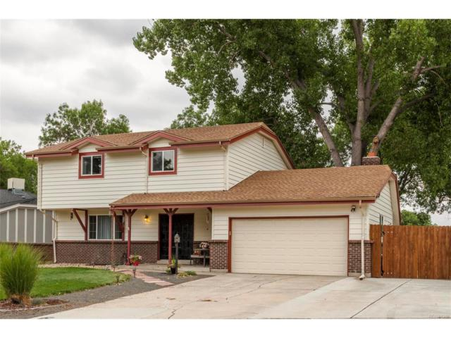 7868 W 82nd Place, Arvada, CO 80005 (MLS #3554342) :: 8z Real Estate