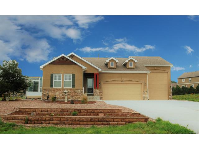 1825 Old Antlers Way, Monument, CO 80132 (MLS #3556426) :: 8z Real Estate
