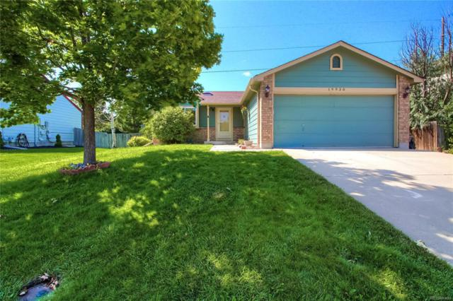 19930 E Bellewood Drive, Centennial, CO 80015 (#3558163) :: Structure CO Group