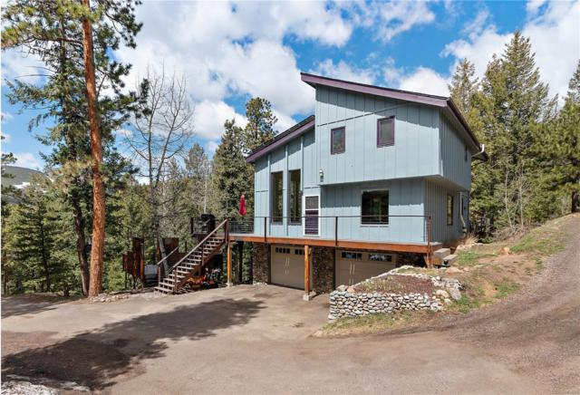 32588 Little Cub Road, Evergreen, CO 80439 (#3560113) :: The Healey Group