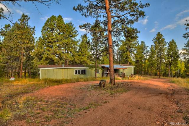 582 Calle Del Viento, Florissant, CO 80816 (#3560426) :: The DeGrood Team