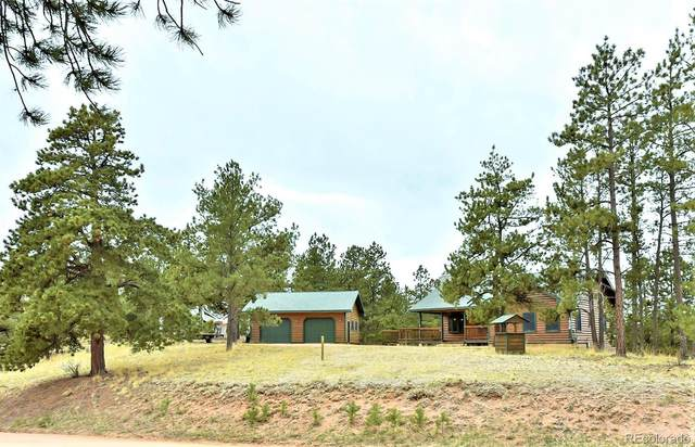 1539 S Mountain Estates Road, Florissant, CO 80816 (#3561442) :: Kimberly Austin Properties