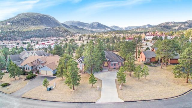651 Findley Court, Estes Park, CO 80517 (#3561489) :: The HomeSmiths Team - Keller Williams