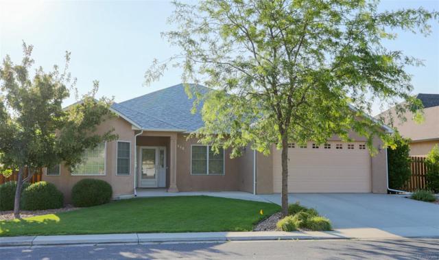 648 D Avenue, Limon, CO 80828 (#3561745) :: The HomeSmiths Team - Keller Williams
