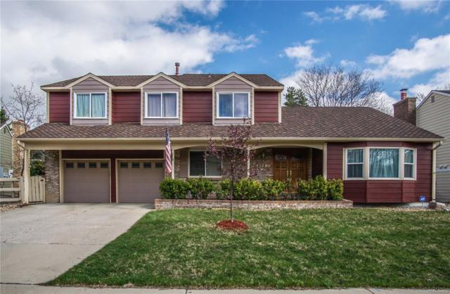 10565 Sundance Mountain, Littleton, CO 80127 (#3562824) :: Wisdom Real Estate