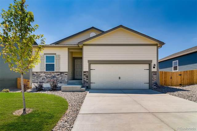 991 Cascade Falls Street, Severance, CO 80550 (#3565584) :: The Dixon Group