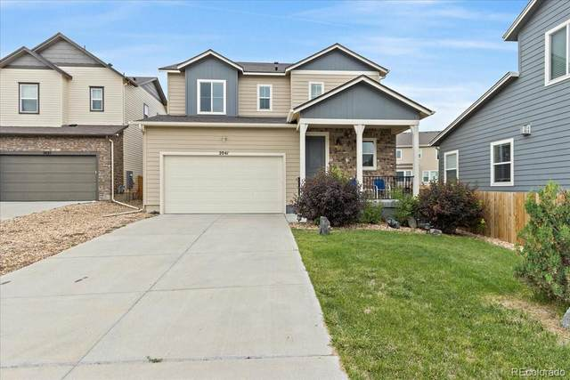 2041 Trail Stone Court, Castle Rock, CO 80108 (#3566661) :: Wisdom Real Estate