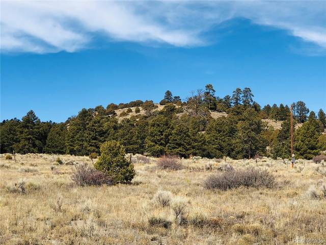 14 W Conejos Trails, Antonito, CO 81120 (#3567756) :: The DeGrood Team