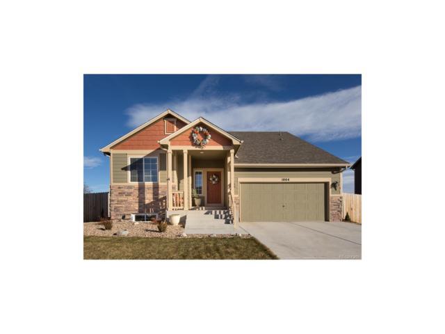 1004 5th Street, Pierce, CO 80650 (MLS #3569329) :: 8z Real Estate