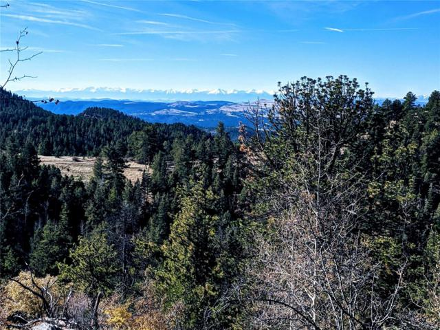 Spring Canyon Ranch, Cripple Creek, CO 80813 (#3570088) :: The Tamborra Team