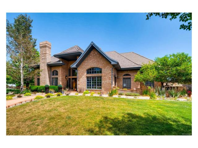 54 Golden Eagle Lane, Littleton, CO 80127 (MLS #3570481) :: 8z Real Estate