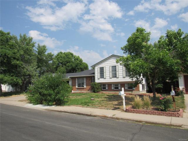2707 W 101st Place, Denver, CO 80260 (#3575827) :: The Peak Properties Group