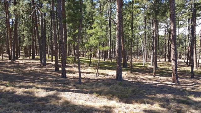 4015 Hidden Rock Road, Colorado Springs, CO 80908 (#3580384) :: The Peak Properties Group