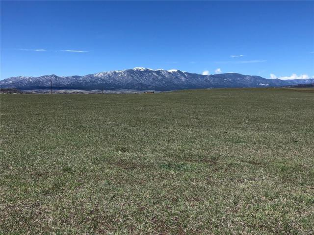 2 Pickney Road, Rye, CO 81069 (#3581298) :: Compass Colorado Realty
