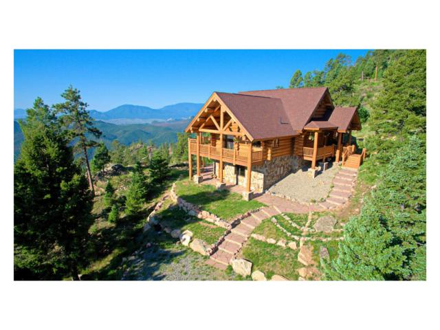 13615 Pine Country Lane, Conifer, CO 80433 (MLS #3583070) :: 8z Real Estate