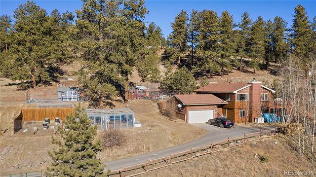 1467 Shelton Drive, Bailey, CO 80421 (#3583932) :: Bring Home Denver with Keller Williams Downtown Realty LLC
