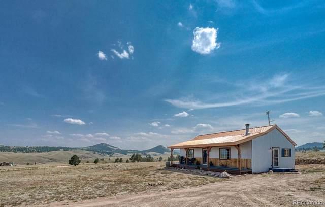 10651 Black Beaver Road, Hartsel, CO 80449 (#3589082) :: Symbio Denver