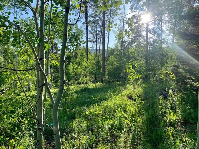 22536 Cheyenne Trail, Oak Creek, CO 80467 (#3589737) :: The DeGrood Team