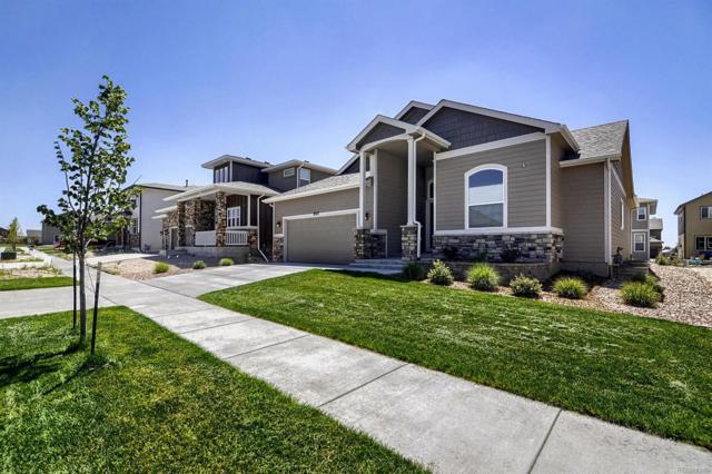 8317 Misty Moon Drive, Colorado Springs, CO 80924 (#3590716) :: The Peak Properties Group