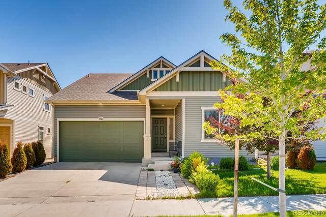 4460 Uravan Street, Denver, CO 80249 (MLS #3591863) :: 8z Real Estate