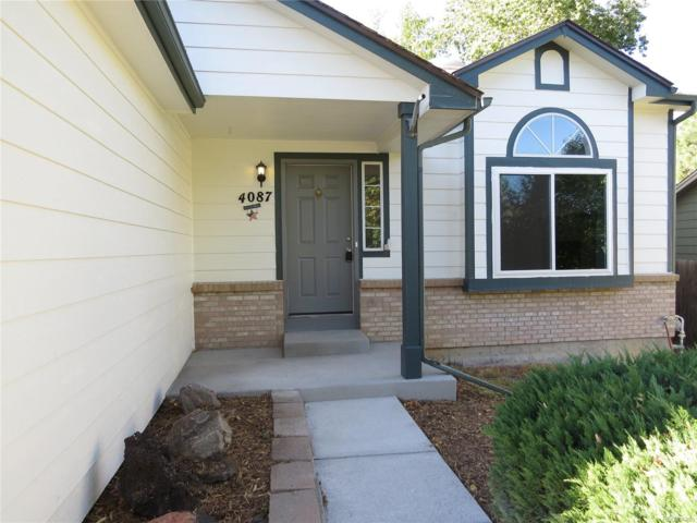 4087 Ashcroft Avenue, Castle Rock, CO 80104 (#3594242) :: The Peak Properties Group