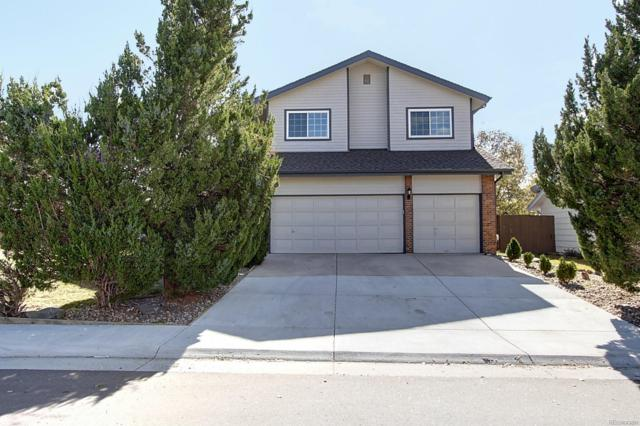 872 Quail Place, Highlands Ranch, CO 80126 (#3596159) :: My Home Team