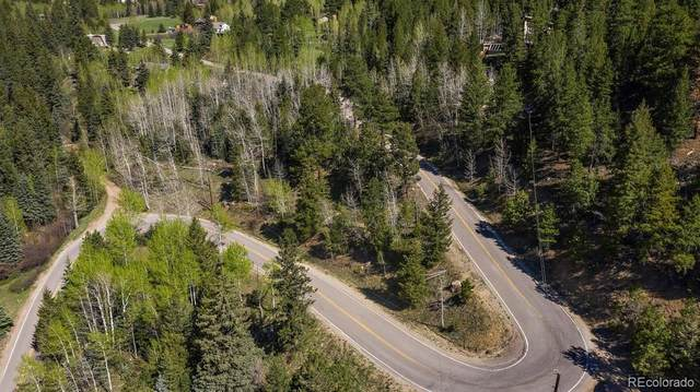 0 Witter Gulch Road, Evergreen, CO 80439 (#3598715) :: Briggs American Properties