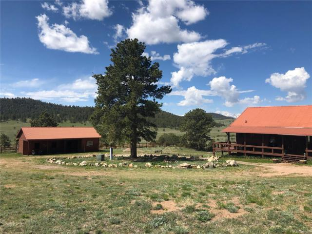 2001 County Road 271, Westcliffe, CO 81252 (#3600845) :: The Heyl Group at Keller Williams