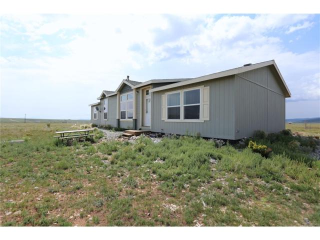 2049 Trout Road, Fairplay, CO 80440 (MLS #3601893) :: 8z Real Estate