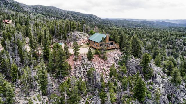107 Piegan Court, Red Feather Lakes, CO 80545 (#3602520) :: The DeGrood Team