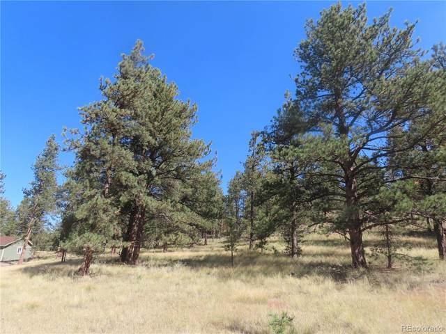 240 N Mountain Estates Road, Florissant, CO 80816 (#3604155) :: Symbio Denver