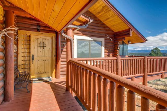 361 Crystal Peak Road, Florissant, CO 80816 (#3606806) :: Wisdom Real Estate