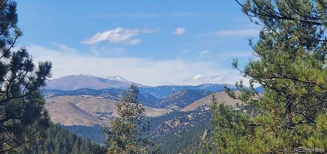 County Road 126, Pine, CO 80470 (#3608739) :: The Colorado Foothills Team | Berkshire Hathaway Elevated Living Real Estate