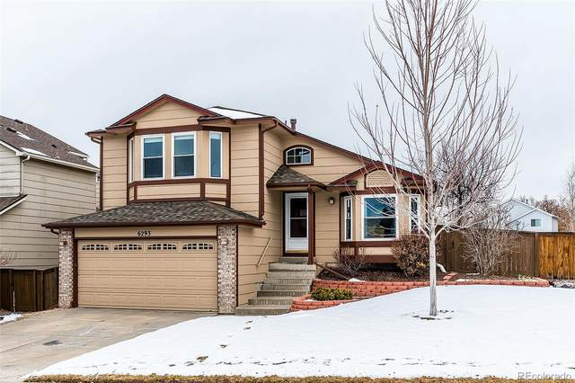 6293 Laguna Circle, Highlands Ranch, CO 80130 (#3608785) :: HergGroup Denver