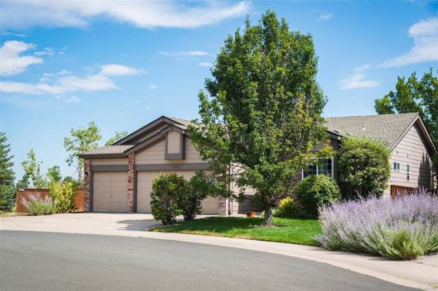 10512 Lynx Court, Littleton, CO 80124 (MLS #3612727) :: Kittle Real Estate