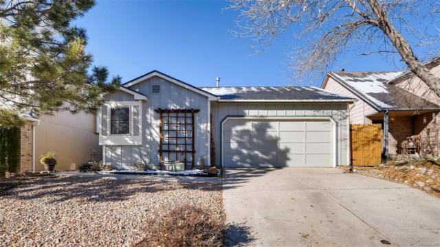 6002 Wisteria Drive, Colorado Springs, CO 80919 (#3617397) :: Wisdom Real Estate