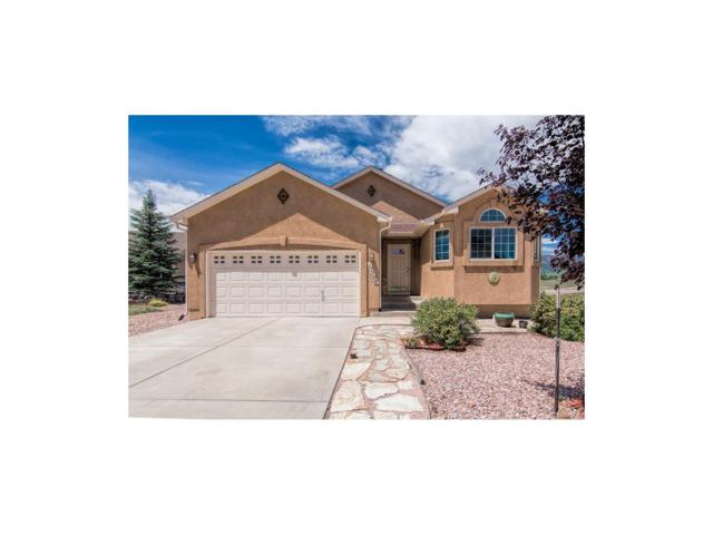 15704 Paiute Circle, Monument, CO 80132 (MLS #3619914) :: 8z Real Estate