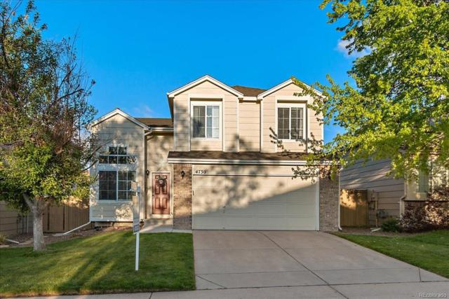 4730 N Foxtail Drive, Castle Rock, CO 80109 (#3621091) :: The Heyl Group at Keller Williams