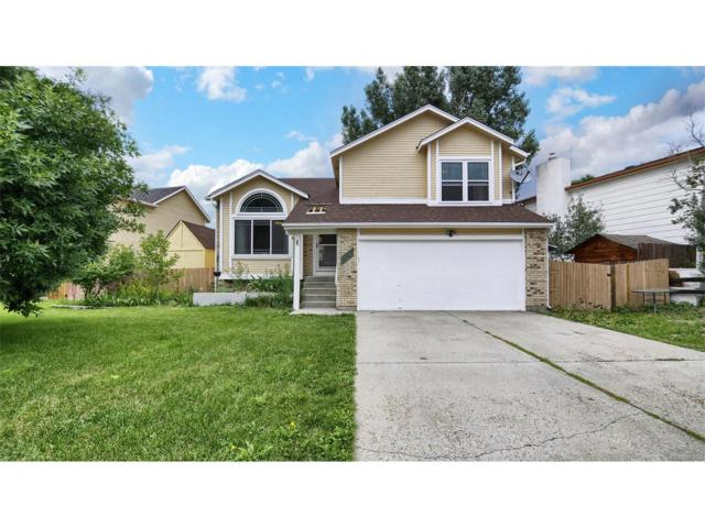 2176 Sable Chase Drive, Colorado Springs, CO 80920 (MLS #3622915) :: 8z Real Estate