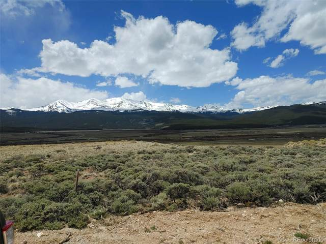 99 Mountain View Drive, Leadville, CO 80461 (#3624676) :: The DeGrood Team