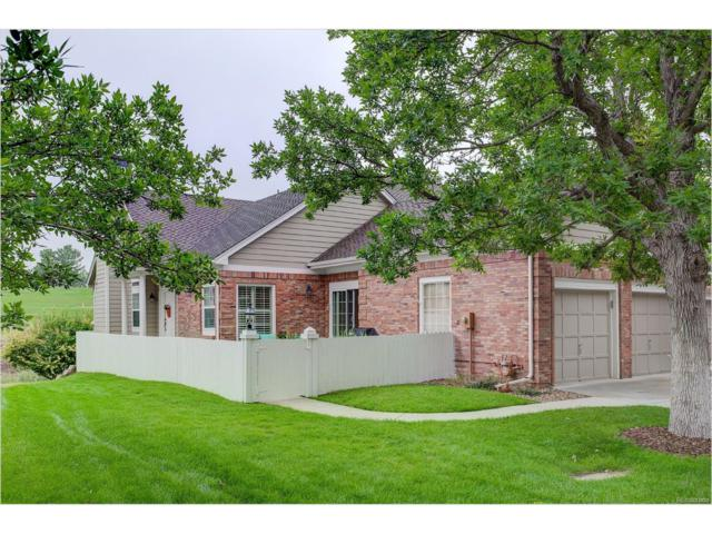 9837 Greensview Circle, Lone Tree, CO 80124 (#3626856) :: The Peak Properties Group