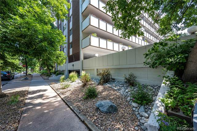 1090 N Lafayette Street #204, Denver, CO 80218 (#3627124) :: Venterra Real Estate LLC