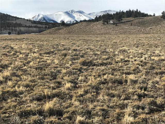 P11 T22 County Rd 30, Twin Lakes, CO 81251 (#3629654) :: Wisdom Real Estate