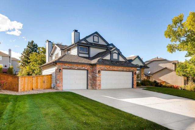2904 Ravenhill Circle, Highlands Ranch, CO 80126 (MLS #3630249) :: 8z Real Estate